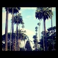 Stars et Donuts: une journée normale à Los Angeles