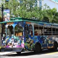 Ma vie en Floride du Sud #3 : West Palm Beach