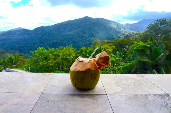 coconutbreak
